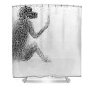 Georges Seurat (1859-1891) Shower Curtain