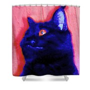 Gepetto The Cat Godzilla Shower Curtain