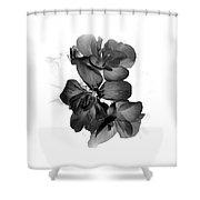 Geranium Black Shower Curtain