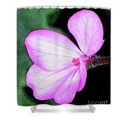 Geranium Blossom Shower Curtain