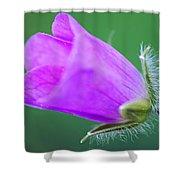 Geranium Budding Out Shower Curtain