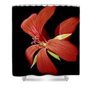 Geranium Flower Shower Curtain