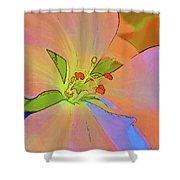 Geranium In Color Shower Curtain