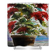 Geranium In June Shower Curtain