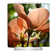 Geranium Joy Shower Curtain