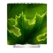 Geranium Leaf Shower Curtain