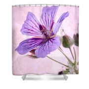 Geranium Maculatum Shower Curtain