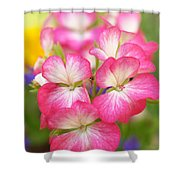 Geraniums On A Brilliant Summer Day Shower Curtain