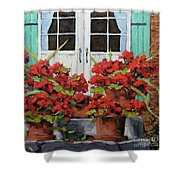 Geraniums On The Porch Shower Curtain