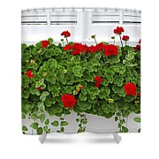 Geraniums On Window Shower Curtain by Elena Elisseeva
