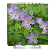 Geraniums Spring Wildflowers Shower Curtain