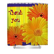 Gerbera Daisy Thank You Card Shower Curtain