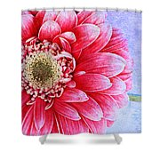Gerbera Texture Shower Curtain