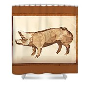 German Pietrain Boar 31 Shower Curtain