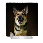 German Shepherd Dog Thor Shower Curtain