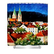 Germany Freiburg Shower Curtain