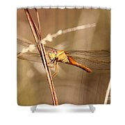 Get My Good Side Shower Curtain