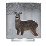 Getting Deeper Shower Curtain