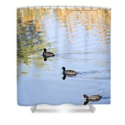 Getting My Ducks In A Row Shower Curtain