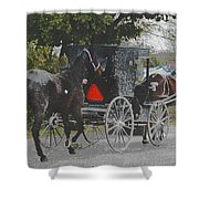 Getting The New Horse Home Shower Curtain