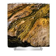 Geyser Basin Springs Shower Curtain