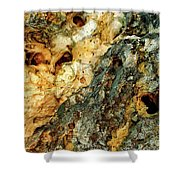 Geyser Paisley Art Shower Curtain