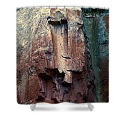 Ghost Cliff Abstract Shower Curtain
