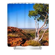 Ghost Gum On Kings Canyon - Northern Territory, Australia Shower Curtain