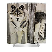 Ghost In The Woods Shower Curtain