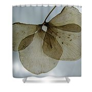 Ghost Of A Flower  Shower Curtain