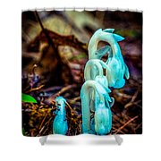 Ghost Plant Shower Curtain
