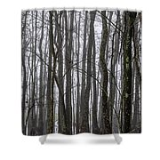 Ghost Swamp Shower Curtain