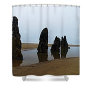 Ghost Trees Of Neskowin  Shower Curtain