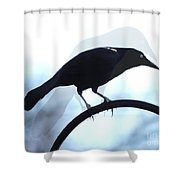 Ghosted Grackle Shower Curtain