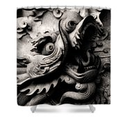 Ghostly Dragon Shower Curtain