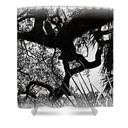 Ghostly Limbs Shower Curtain