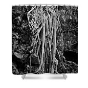 Ghostly Roots - Bw Shower Curtain