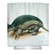 Giant Armadillo Shower Curtain
