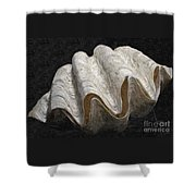 Giant Clam Shower Curtain