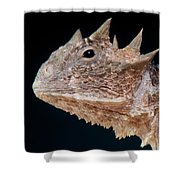 Giant Horned Lizard Shower Curtain