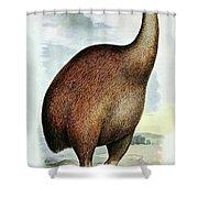 Giant Moa Dinornis Ingens, Cenozoic Bird Shower Curtain