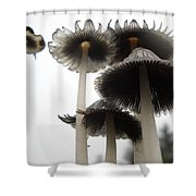 Giant Mushrooms In June Shower Curtain