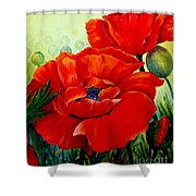 Giant Poppies 3 Shower Curtain