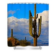 Giant Saguaro In The Southwest Desert  Shower Curtain