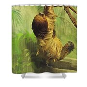 Giant Sloth     June          Indiana Shower Curtain