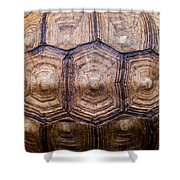 Giant Tortoise Carapace Shower Curtain