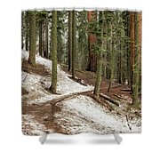 Giants Among Us Shower Curtain