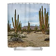 Giants Shower Curtain