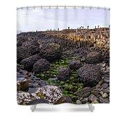 Giants Causeway, Northern Ireland Shower Curtain