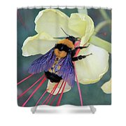 Gila Bumblebee Love Shower Curtain